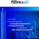 Guide pratique Raccordement des immeubles professionnnels et d